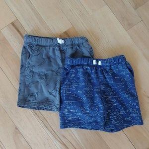 4T Boys Cotton Casual Shorts